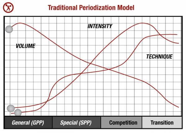 traditional periodization model2